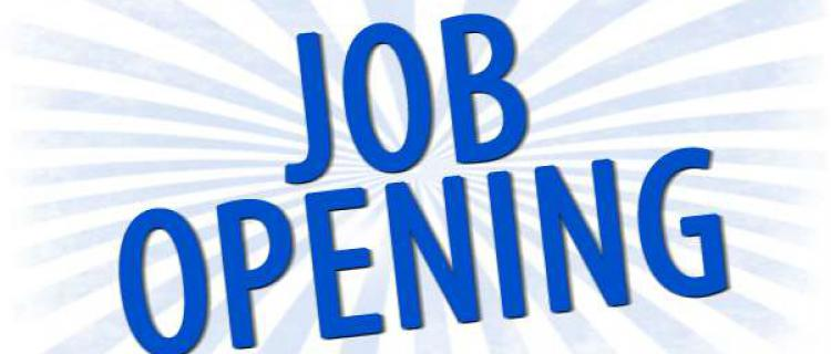 Payroll Clerk position is available